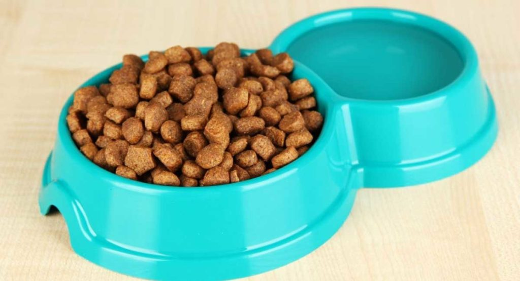 The Best Dog Food for German Shepherd Dogs